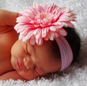 Light Pink Daisy Flower Headband