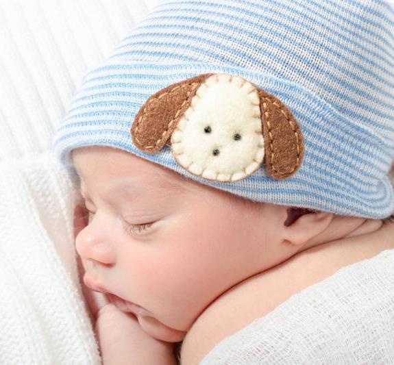 Baby Boys Puppy Newborn Hospital Hat
